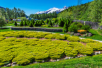 Jewell Gardens, Skagway, Alaska USA.