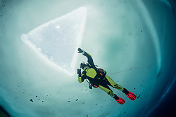 Taucher unter Eis, Eistaucher unter Eisloch, Eistauchen, scuba diver under ice or icehole, scuba icediving, Lechausee, Reutte, Weissenbach, Tirol, Oesterreich, Tyrol, Austria, MR Yes
