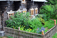 A warm summer and plenty of rain makes for a lush garden in the village of Mandrogy, Russia. Destroyed during WW II, the village was rebuilt in the 90's by an enterprising businessman who envisioned a place to experience traditional village culture along the pristine Svir River.