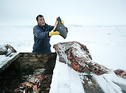 Holding whale blubber. Bent Igniatiussen is getting food for his family as well as for his sled dogs, in a wodden box placed at the edge of the settlement. Life in and around the small Inuit settlement of Isortoq (population of 64), in East Greenland.