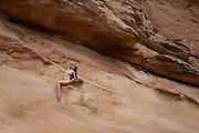 Nude woman sitting on a wall of Crack Canyon, San Rafael Reef, Utah