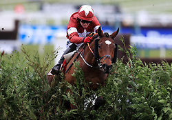 Tiger Roll ridden by Keith Donoghue goes on to win the Glenfarclas Chase during Ladies Day of the 2018 Cheltenham Festival at Cheltenham Racecourse.