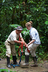 Mayer Attaching Safety Straps To Maggie Before Heading Up Canopy Tower, Tiputini
