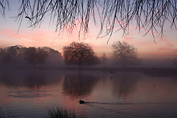 © Licensed to London News Pictures. 14/02/2019. London, UK. Mist clings to the lake as the Sun rises on a cold and frosty Bushy Park. Clear skies and warmer temperatures are expected in the south later today. Photo credit: Peter Macdiarmid/LNP