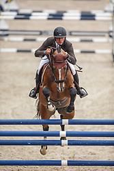 Lambrecht Vincent, (BEL), Cooper van de Heffinck<br /> Zangersheide Sires of the World<br /> World Championship Young Jumping Horses - Lanaken 2015<br /> © Hippo Foto - Dirk Caremans<br /> 19/09/15
