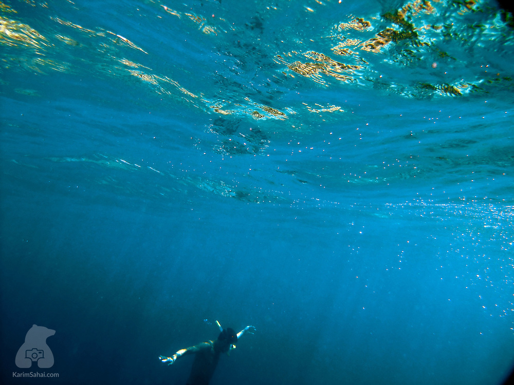 A snorkeler swims in the blue waters of the Great Astrolabe Reef off the island of Kadavu, Fiji.