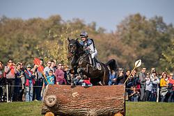 Wilson Nicola, GBR, JL Dublin<br /> Mondial du Lion - Le Lion d'Angers 2018<br /> © Hippo Foto - Dirk Caremans