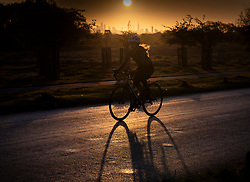 © Licensed to London News Pictures. 07/05/2021. London, UK. A cyclist rides through Richmond Park as the morning sun rises over the City of London. Colder wetter weather is expected over the weekend and into next week. Photo credit: Peter Macdiarmid/LNP