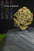 The Church nug photo - the best fine art cannabis photography on the web