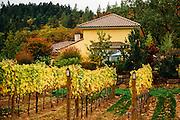 Exterior image  DANCIN Vineyard's tastiing room in Southern Oregon in Medford