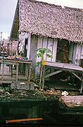 Shop in informal housing wooden shacks built on timber logs known as the Floating City, Manaus, Brazil 1962 removed as part of slum clearance policy in late 1960s