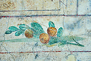 Roman Fresco of fruit bird from  The Large Columbarium in Villa Doria Panphilj, Rome. A columbarium is usually a type of tomb with walls lined by niches that hold urns containing the ashes of the dead.  Large columbaria were built in Rome between the end of the Republican Era and the Flavio Principality (second half of the first century AD).  Museo Nazionale Romano ( National Roman Museum), Rome, Italy. .<br /> <br /> If you prefer to buy from our ALAMY PHOTO LIBRARY  Collection visit : https://www.alamy.com/portfolio/paul-williams-funkystock/national-roman-museum-rome-fresco.html<br /> <br /> Visit our ROMAN ART & HISTORIC SITES PHOTO COLLECTIONS for more photos to download or buy as wall art prints https://funkystock.photoshelter.com/gallery-collection/The-Romans-Art-Artefacts-Antiquities-Historic-Sites-Pictures-Images/C0000r2uLJJo9_s0