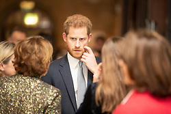 The Duke of Sussex attends a gala performance of The Wider Earth at the Natural History Museum in London.
