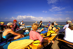 Stock photo of a group of kayakers in the bay