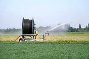 Nederland, Kekerdom, 18-5-2020 Een boer beregent zijn perceel dmv een waterkanon. Het water wordt uit een put in de grond opgepompt, grondwater. Foto: Flip Franssen