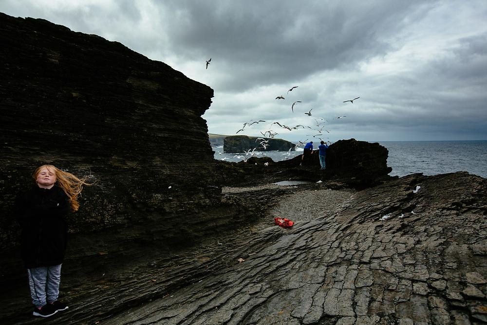 Kilkee Cliffs, County Clare, Ireland