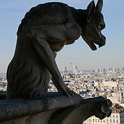 View of Paris skyline with Gargoyles in the foreground from the towers of Notre Dame Cathedral