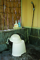 In a Japanese bath, the area to wash yourself before you enter the bath is called the araiba which will have showers, taps, buckets and small stools. Entering the main bath without at least rinsing yourself with a bucket or at the araiba is considered very bad form in a public bath, sento or onsen.
