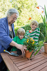 Grandmother repotting plant with her grandsons