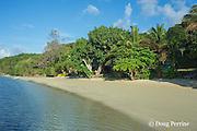 beach at Ika Lahi Lodge, Hunga Island, Vava'u, Kingdom of Tonga, South Pacific