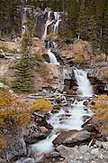 Tangle Creek Falls inJasper National Park