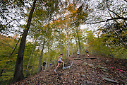 Hill climb around mile 8 at the Patapsco 50k.