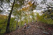 Hill climb around mile 8 at the Patapsco 50k.