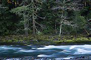 The banks of the Clackmas River in the Mount Hood National Forest, Oregon.