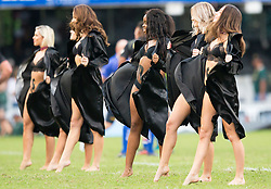 DURBAN, SOUTH AFRICA - APRIL 21: Shark Danvers performing during the Super Rugby match between Cell C Sharks and DHL Stormers at Jonsson Kings Park on April 21, 2018 in Durban, South Africa. Picture Leon Lestrade/African News Agency/ANA