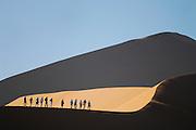 Angeleitet von einem Touristenführer können Gruppen von Reisenden die Dünenkämme der berühmten roten Dünen des Sossusvlei erkunden. In den frühen Morgenstunden ist die Hitze beim Aufstieg noch erträglich.  | Several tourists and a guide walking in the red sand dunes of Sesriem Sossusvlei sand dune