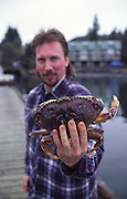 Crab, Tofino, Vancouver Island, B.C., Canada (editorial use only, no model release)<br />