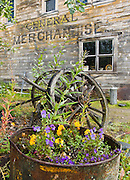 """A flower bed and old wooden wheel rest by the old Watsjold Groceries & Meat building labeled """"GENERAL MERCHANDISE"""" in historic McCarthy, Alaska, USA. McCarthy and nearby Kennecott Mines National Historic Landmark are nestled under the glacier-clad Wrangell Mountains within Wrangell-St. Elias National Park and Preserve. Old mine buildings, artifacts, and colorful history attract summer visitors. Remote McCarthy is connected to Chitina via the McCarthy Road spur of the Edgerton Highway. At the east end of McCarthy Road, visitors must park their vehicle and walk across the footbridge to McCarthy. From McCarthy, a privately-operated shuttle takes visitors 5 miles to Kennecott. After copper was discovered between the Kennicott Glacier and McCarthy Creek in 1900, the Kennecott town, mines, and Kennecott Mining Company were created and named after the adjacent glacier. Kennicott Glacier and River had previously been named after Robert Kennicott, a naturalist who explored in Alaska in the mid-1800s. The corporation and town stuck with a mistaken spelling of """"Kennecott"""" with an e (instead of """"Kennicott"""" with an i). Partly because alcoholic beverages and prostitution were forbidden in the company town of Kennecott, the neighboring town of McCarthy grew quickly to provide a bar, brothel, gymnasium, hospital, and school. The Copper River and Northwestern Railway reached McCarthy in 1911 to haul over 200 million dollars worth of ore 196 miles to the port of Cordova on Prince William Sound. By 1938, the worlds richest concentration of copper ore was mostly gone, the town was mostly abandoned, and railroad service ended. Not until the 1970s did the area began to draw young people for adventure and the big money of the Trans Alaska Pipeline project. Declaration of Wrangell-St. Elias National Park in 1980 drew adventurous tourists who helped revive McCarthy with demand for needed services. Wrangell-St. Elias National Park and Preserve is the largest National Park in the USA."""