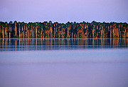Lake Sandoval, Peruvian Rainforest, South America