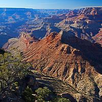 USA, Arizona, Grand Canyon. Grand Canyon South Rim vista.