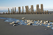 Homer, Alaska. Kachemak Bay.  Old barnacle coated pilings on the Homer spit.  Beach and mountain view. Sand. Scenic