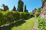 wide garden with hedges of a property