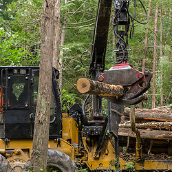 A log forwarder moving logs in the Reed Plantation in Reed, Maine.