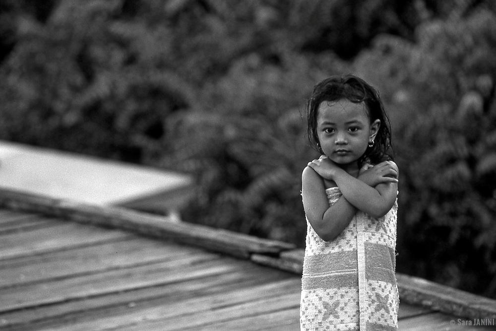 Tanjung Puting, Kalimatan, Borneo, Indonesia, Asia