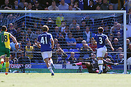 Leighton Baines of Everton scores his teams 2nd goal from the penalty spot. Barclays Premier League match, Everton v Norwich City at Goodison Park in Liverpool on Sunday 15th May 2016.<br /> pic by Chris Stading, Andrew Orchard sports photography.