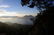 Volcan Toliman, 3153m, and, behind it,  Volcan Atltlan, 3525m across Lake Atitlan from the Parque Ecologico Regional Chuirxmola above Panajachel. Volcan San Pedro is hidden by the cloud forest trees on the right. Parque Ecologico Regional Chuirxmola, Panajachel, Republic of Guatemala. 07Mar14.