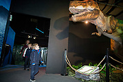 NO FEE PICTURES<br /> 17/12/17 pictured at the prehistoric preview and official opening of Dinosaurs Around The World now open at the the Ambassador Theatre  for a limited time only. Embark on a globetrotting expedition around the world to discover the Age of Reptiles! With advanced animatronics, a multi-layered narrative, fossils, authentic casts, cutting-edge research and immersive design elements you'll experience the Age of Reptiles as it comes to life!  Dinosaurs Around the World is open daily to the public from 10 a.m. with last entry at 6pm for a limited time only. Tickets available from Ticketmaster.ie and from the Ambassador Theatre Box Office now. Visit www.mcd.ie for more. Pictures: Arthur Carron