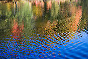 Color of Fall trees reflect in rippled water of pond.