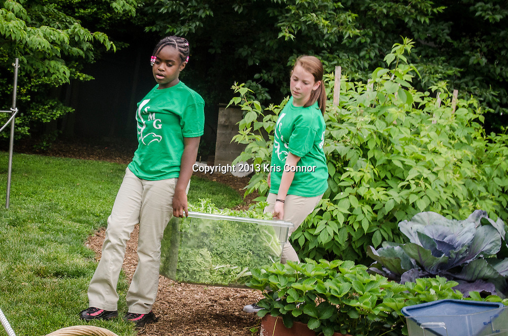 (L-R) Eliza Croom, and Rachel Bradley of Sarah Moore Greene Magnet Technology Academy School, Knox County, TN  carry vegetables  with fellow students during an event where they and the First Lady Michelle Obama harvested the White House Kitchen Garden for the fifth year in a row at the White House on May 28, 2013 in Washington DC. Photo by Kris Connor