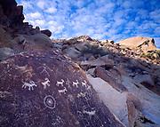 Desert bighorn sheep petroglyphs, Great Basin Style, Grapevine Canyon, Newberry Mountains, Lake Mead National Recreation Area, Nevada.