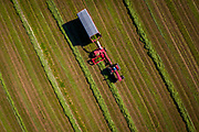 David Schlies cuts a field of hay at Old Settlers Dairy near Denmark wisconsin