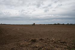 Novembre 2018, Campagna Brindisi zona Ex-Polveriera