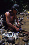 FISHING, MALAYSIA. Sarawak, Borneo, South East Asia. Dayak, 'Kelabit', fisherman. Tropical rainforest and one of the world's richest, oldest eco-systems, flora and fauna, under threat from development, logging and deforestation. Home to indigenous Dayak native tribal peoples, farming by slash and burn cultivation, fishing and hunting wild boar. Home to the Penan, traditional nomadic hunter-gatherers, of whom only one thousand survive, eating roots, and hunting wild animals with blowpipes. Animists, Christians, they still practice traditional medicine from herbs and plants. Native people have mounted protests and blockades against logging concessions, many have been arrested and imprisoned.