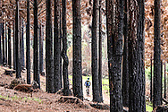 General scenic photo taken during day two of the Glacier Storms River Traverse mountain bike stage race held at the The Tsitsikamma Village Inn situated in Storms River Village on the Garden route, South Africa on the 6th August 2016<br /> <br /> Photo by:  Oakpics.com / Dryland Event Management / SPORTZPICS<br /> <br /> <br /> {dem16gst}
