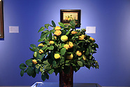 Monterey Museum Art in Bloom  2017
