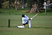 Cricket Bayfiled Park Day One Mix